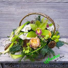 Состав: Орхидея Цимбидиум