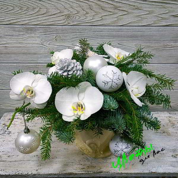 Состав: Орхидея Фаленопсис 5 шт
