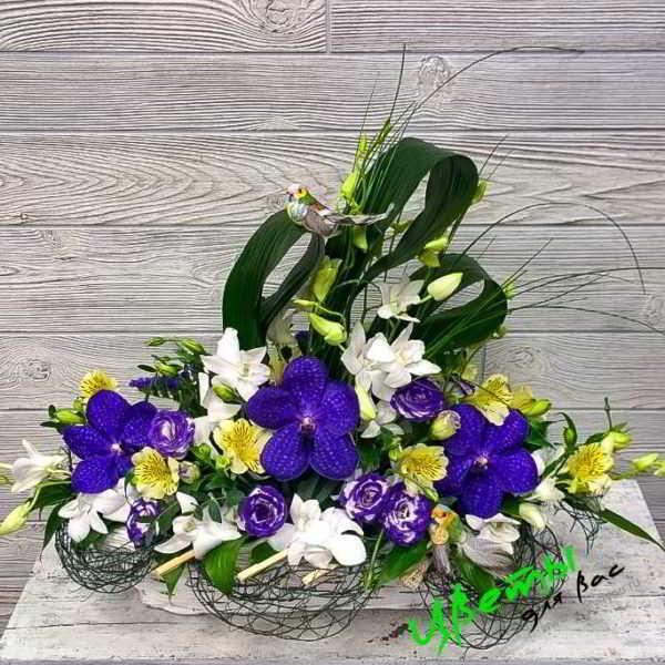 Состав: орхидея дендробиум