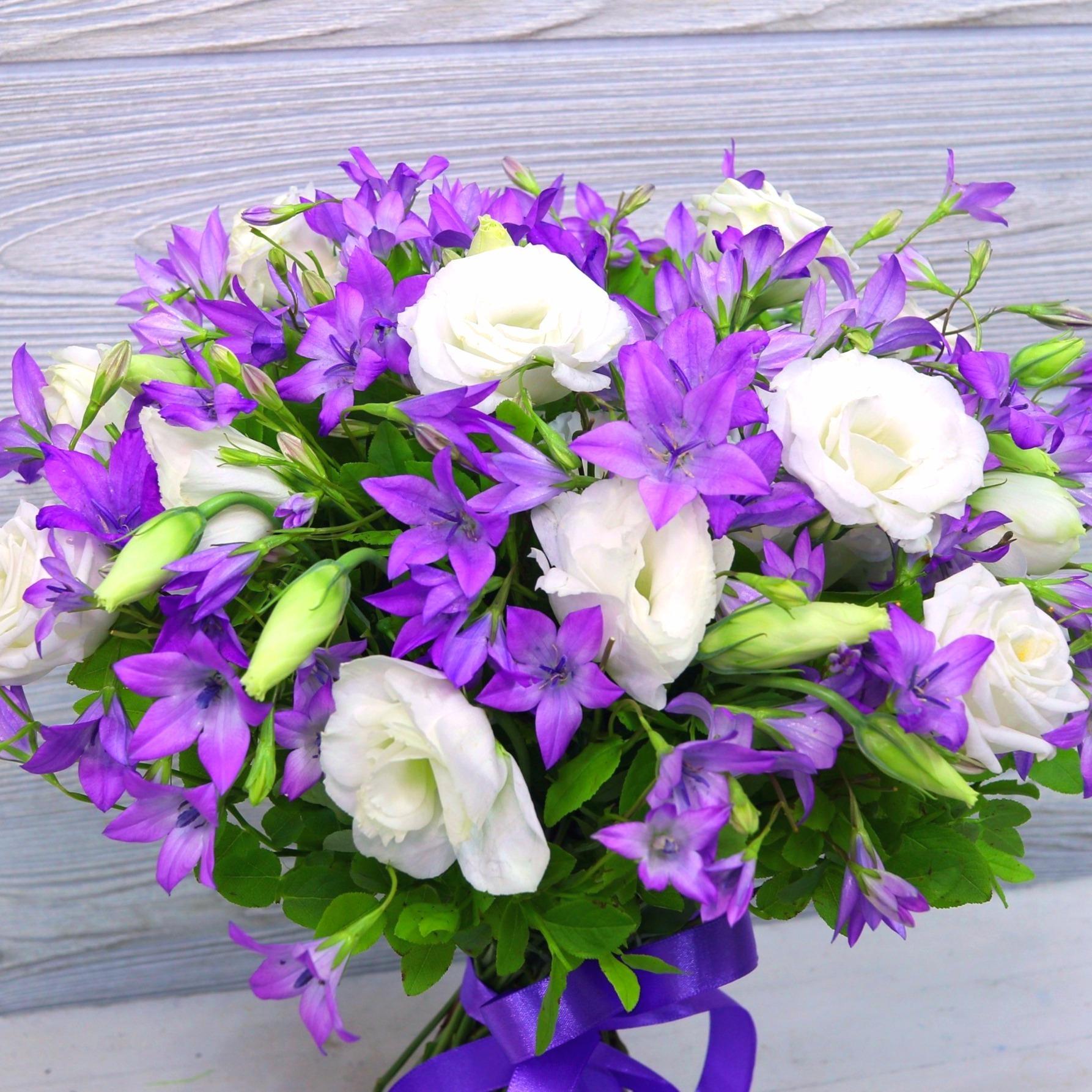 25 цветов в букете колокольчики, цветы комнатные
