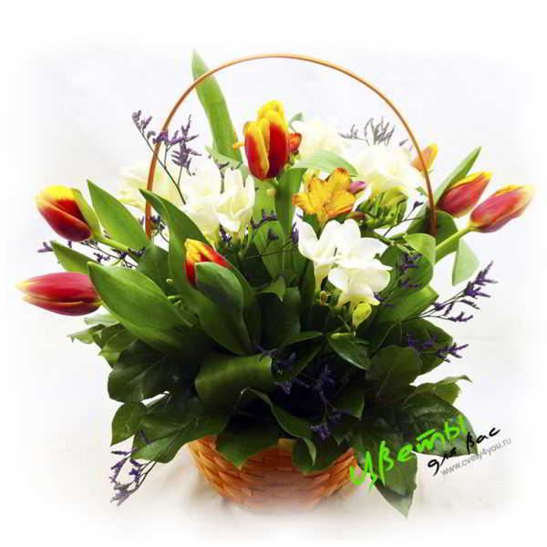 Состав: тюльпаны