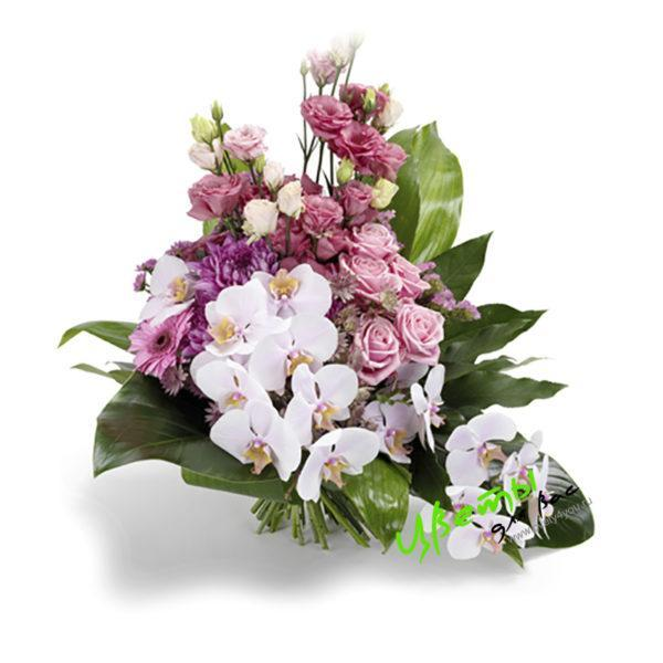 Состав: орхидея фаленопсис