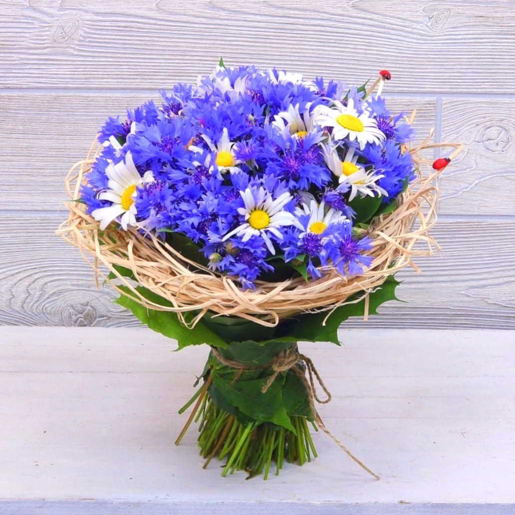 Цветы черная, купить букет цветов из васильков в москве