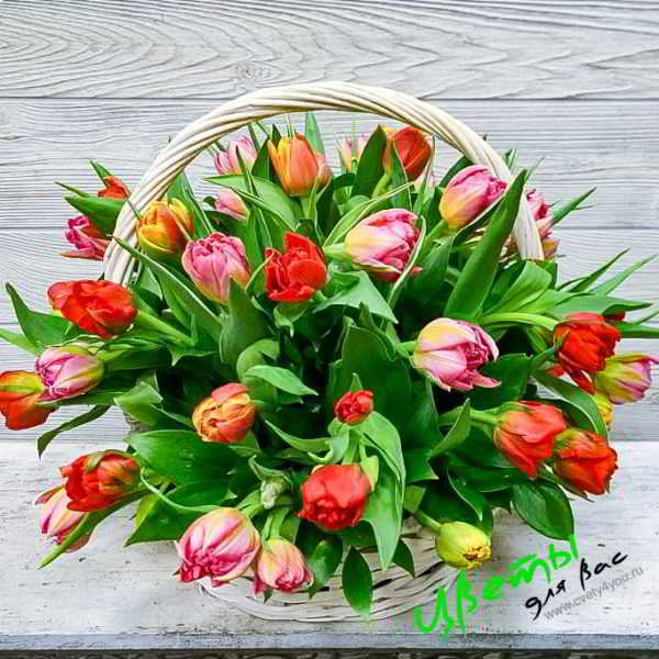 Состав: корзина тюльпанов 51 шт.