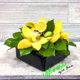 Орхидея и лимон