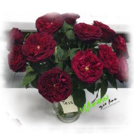 Состав: купить букет красных английских роз Тэсси